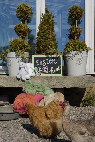 Happy Easter From John and Alli Croft at Croft Conservatories